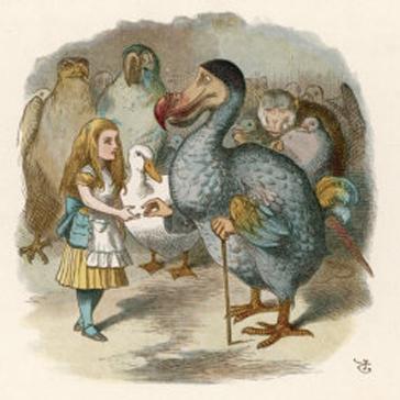 Dodo Bird Alice In Wonderland Tim Burton